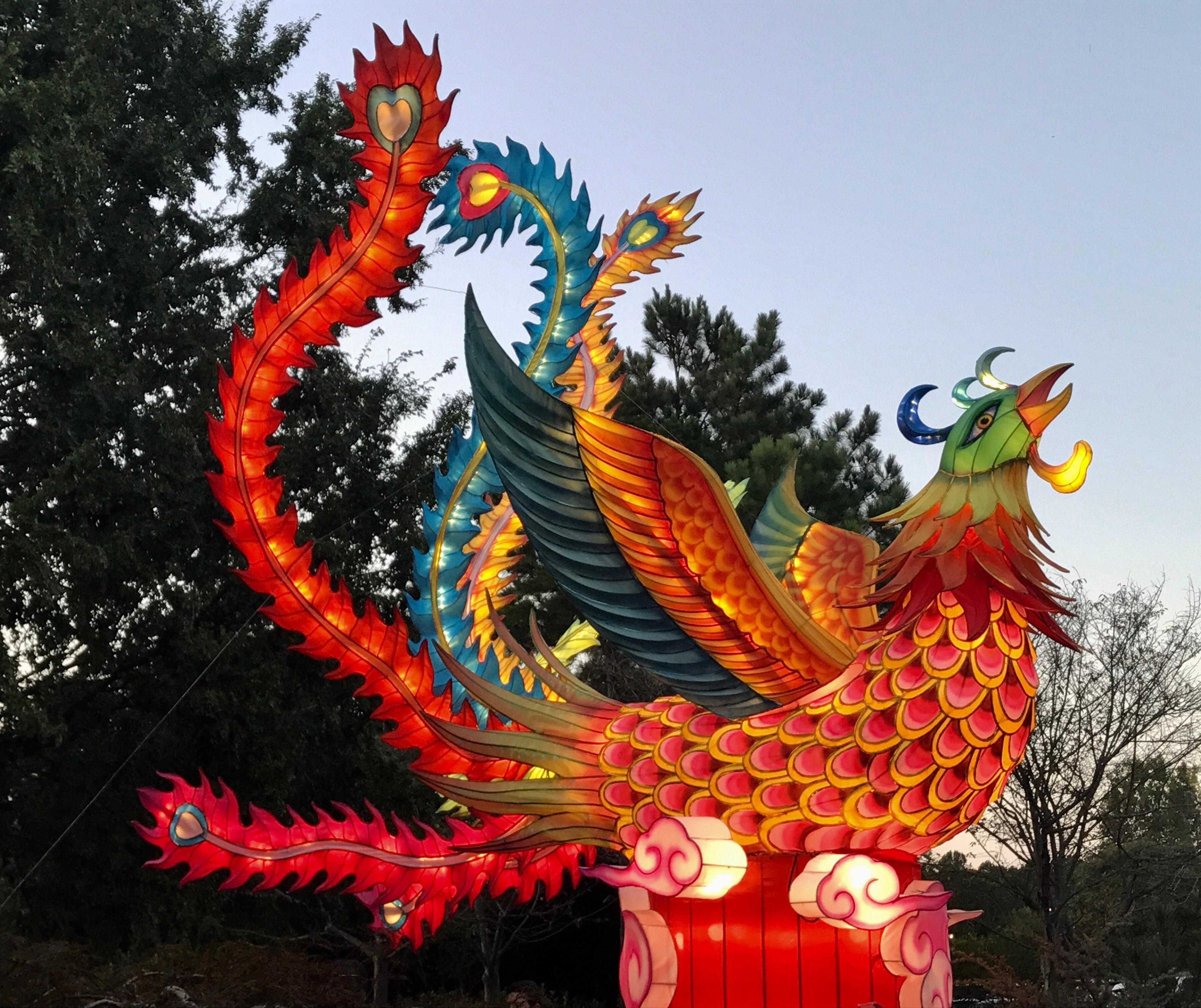 Strange Places Daniel Stowe Botanical Garden Chinese Lantern Festival Everyday Strange